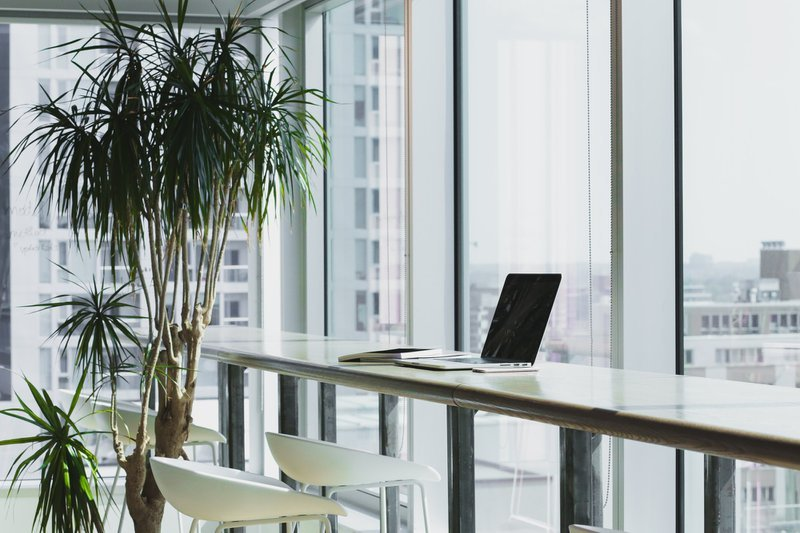 Office space with tree and long office bar style table along a window, with one laptop and notebook on it / Photographer: Alesia Kazantceva | Source: Unsplash